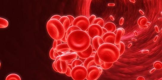 Hamilelikte İdrarda Kan (Eritrosit) Görülmesi