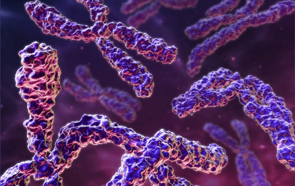 Son Teknoloji ve Daha Az Maliyetli QPCR Genetik Tanı Yöntemi (Video)